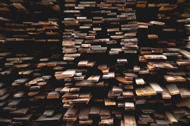 Древесину вывозили в другие страны по подложным документам