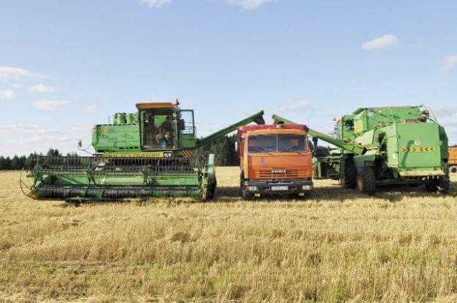 4,9 млн га земель в крае пригодны для сельского хозяйства.