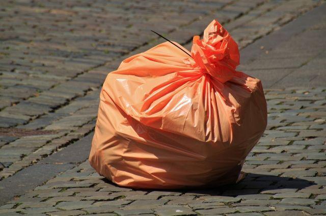 К 2019 вОмской области построят мусорный полигон заполмиллиарда