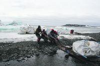 Несколько лет подряд тонны мусора вывозятся с островов Ледовитого океана.