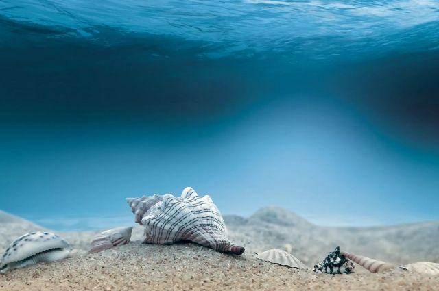 Найден новый источник ядерного топлива— Мировой океан