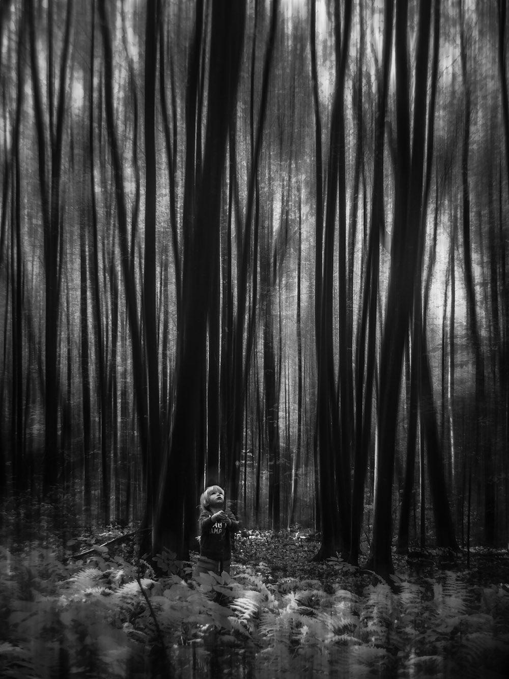 «Восхищение тишиной» по версии АиФ стало лучшим фото в категории «Тьма»