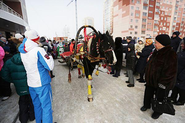 Новосибирцы прокатились на лошади из конного клуба «Мустанг»