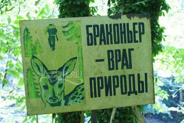 В феврале в Калининградской области активизировались браконьеры.