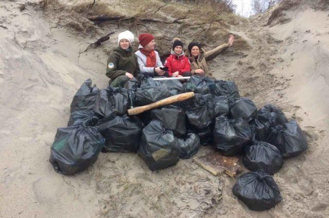 Нацпарк приглашает на генеральную уборку побережья Куршской косы.