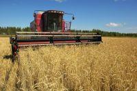 Региональным производителям сельхозпродукции трудно найти новые рынки сбыта.
