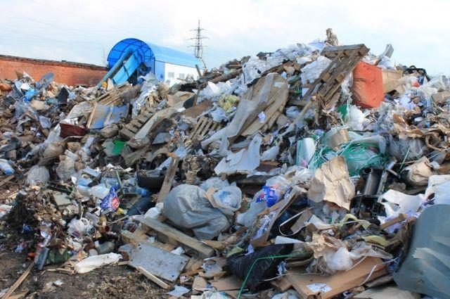 Вокруг Новосибирска несколько легальных свалок и тысячи - нелегальных