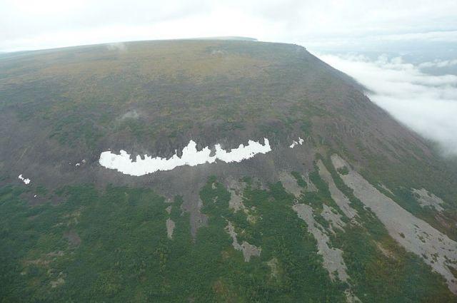 В заповеднике «Путоранский» насчитали чуть больше 800 голов.