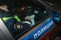Бывший полицейский догнал грабителя и вызвал полицейских, которые задержали нарушителя и заключили под стражу.