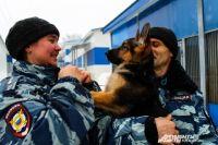 Любовь уверена: собака - генератор положительных эмоций