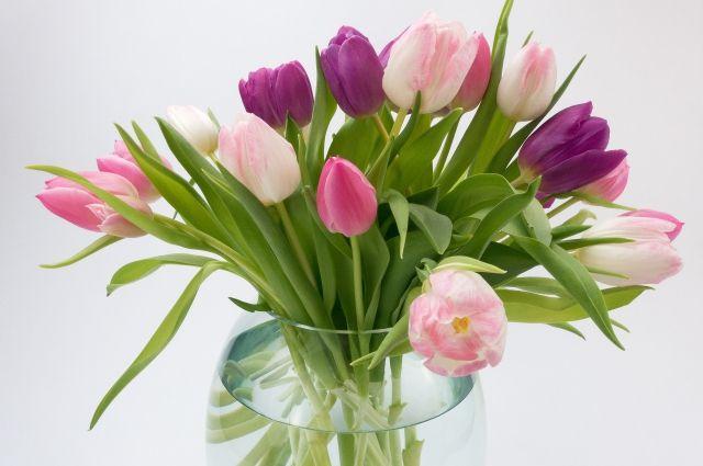 Цветы поднимают женщинам настроение и улучшают здоровье