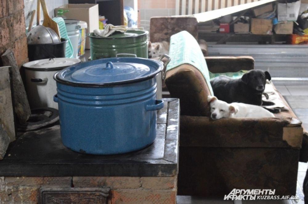 Работы до лета и на лето осталось немало: положить плитку, доделать кухню, построить вольеры для выгула собак на улице, разделить больных и здоровых кошек по разным комнатам, доделать послеоперационные собачьи клетки.