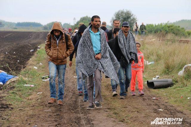 ВКале власти города запретили раздавать еду мигрантам