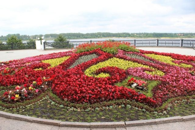 Стрелку вЯрославле украсят дизайнерские цветочные композиции