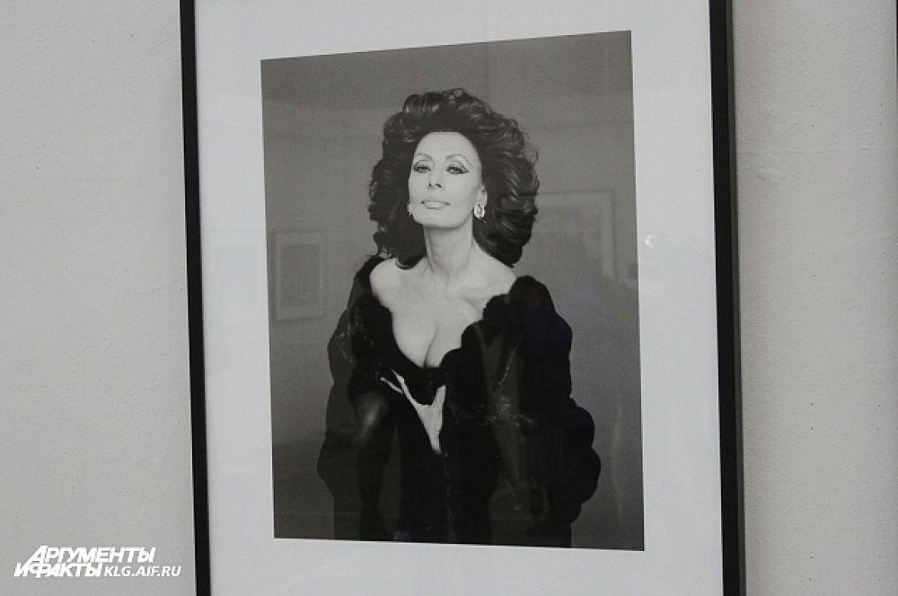 Любовь к кино навсегда стала одним из главных векторов в творчестве Барбьери. Портрет Софи Лорен.