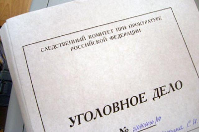 ГСУСК РФ: вотношении Пустошкиной возбуждено уголовное дело