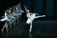 Солисты Государственного академического театра балета имени Леонида Якобсона в балете «Лебединое озеро» на музыку П.И.Чайковского.