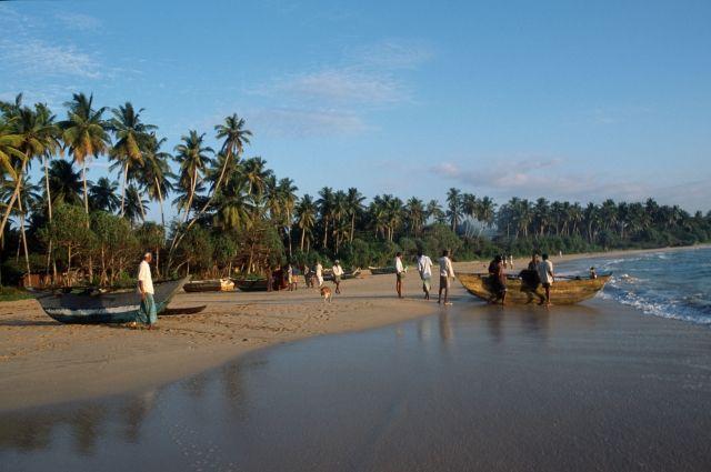 Скоро и туда путь закажут: в столице Шри-Ланки задержали 9 россиян