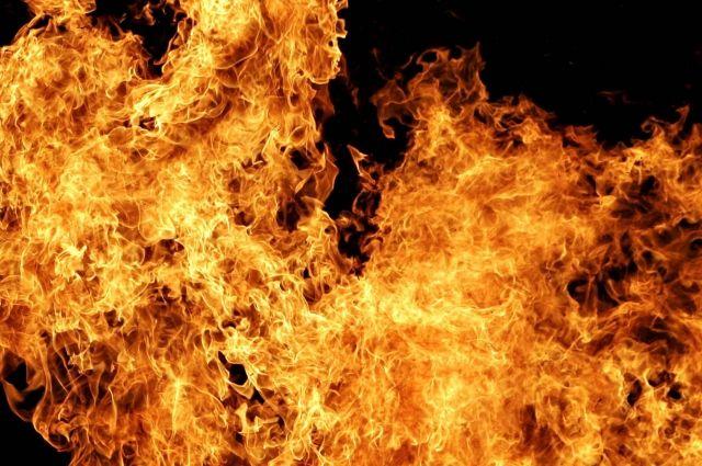 ВПетербурге тушили серьёзный пожар наскладе макулатуры