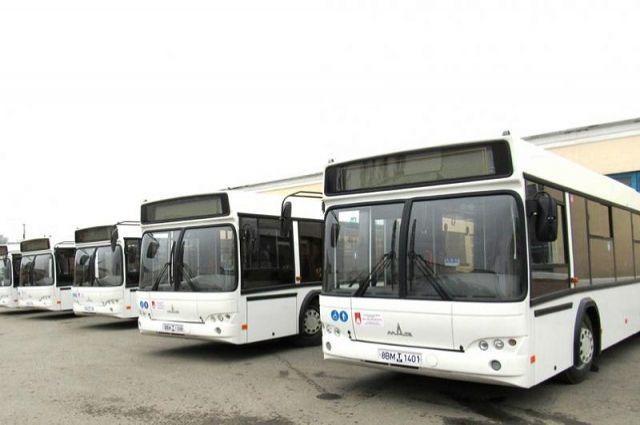 Напокупку новых автобусов вРостове выделят свыше 800 млн руб.