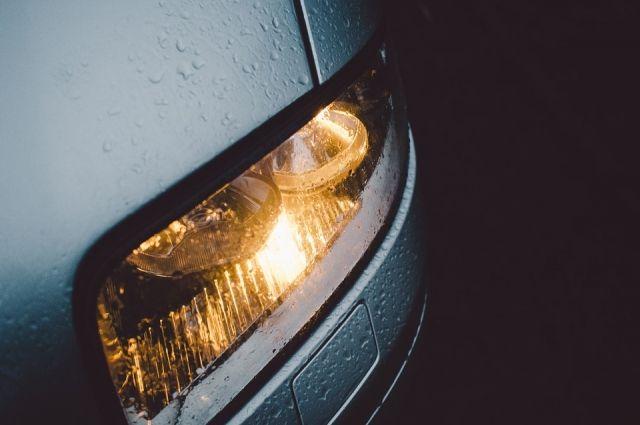 ВВоронеже владельцы автомобилей подарили женщинам на8марта немалый тюльпан измашин