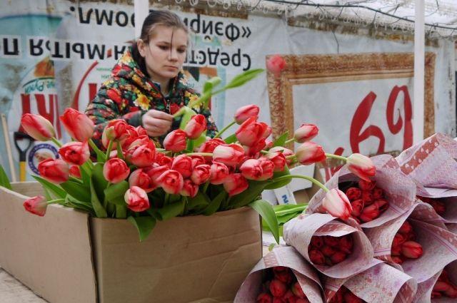 Калининградские садоводы вырастили к 8 Марта более 7 миллионов тюльпанов.