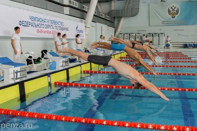 Наши пловцы отличились как в индивидуальных видах, так и в эстафетах.