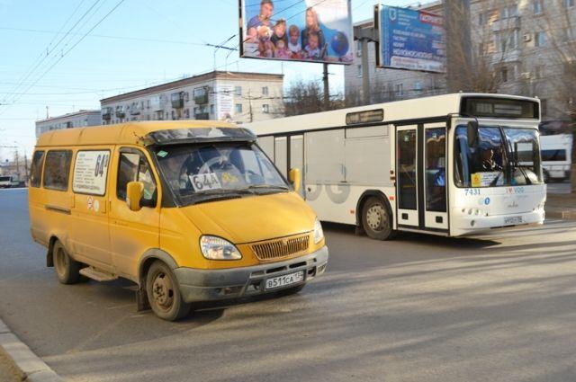 Маршрутки и автобусы на улицах города - чья возьмёт верх?