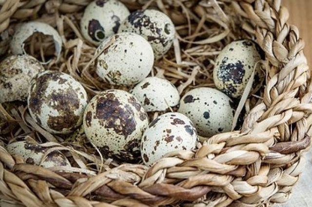 Яйца перепёлки в два раза превышают содержание холина, который способствует снижению холестерина в крови.