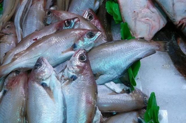 Управление Роспотребнадзора по Пермскому краю проверило 195 предприятий региона, задействованных в изготовлении и реализации рыбной продукции.