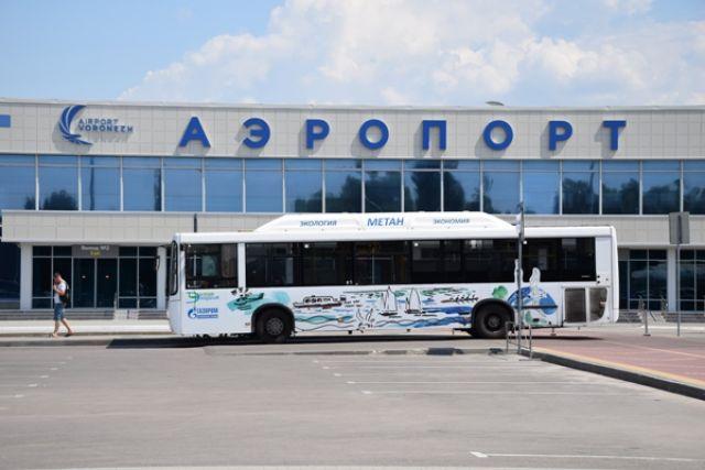Прямые рейсы вСочи, Симферополь иСанкт-Петербург раскроются изВолгограда