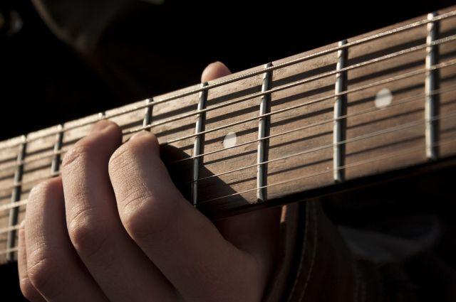 Подсудимый музыкант свою вину признал.