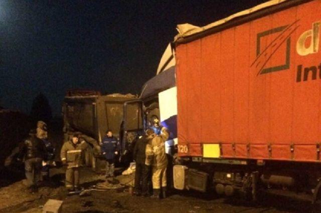 Два грузового автомобиля столкнулись вТверской области