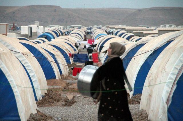 Захарова строго ответила СМИ за фальшивое освещение критической ситуации вМосуле