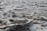 Около 7 минут есть у человека на то, чтобы выбраться из ледяной воды. Дальше - смерть.