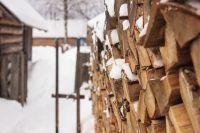 Многие села Алтайского края стремительно теряют жителей.