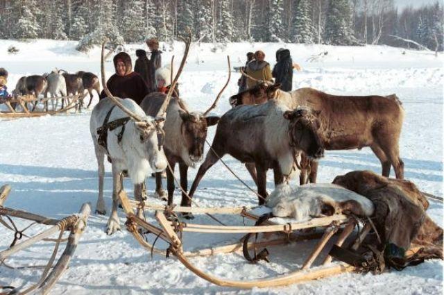 В тайге Югры живут представители коренных народов.