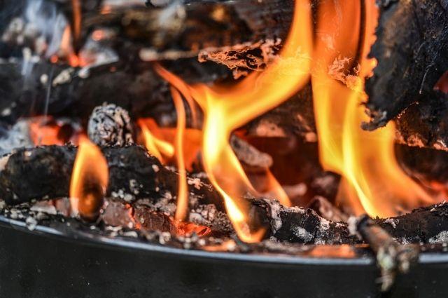 ВОмске сожгли около полтонны пухо-перьвой смеси