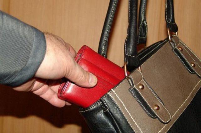 В сумке находились кошелек с деньгами и банковские карты.