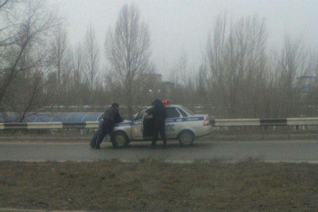 Задержанного сажают в автомобиль ДПС.