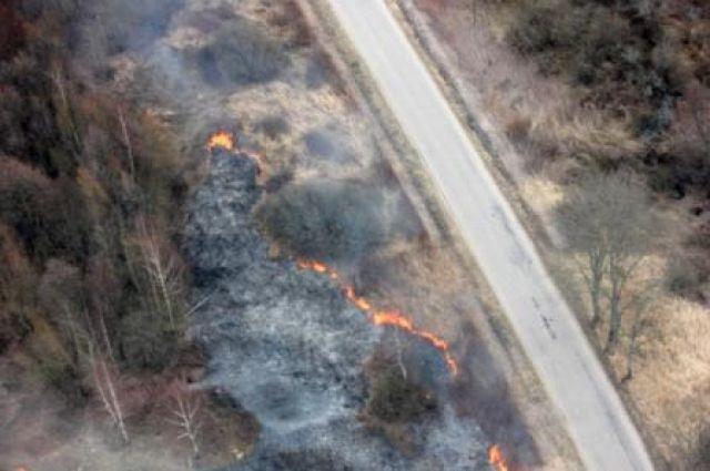 30 га земли выгорело за сутки в Калининградской области из-за пала травы.