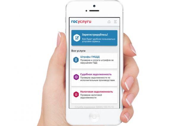 Чувашия— втройке лидеров поколичеству граждан, использующих электронные госуслуги