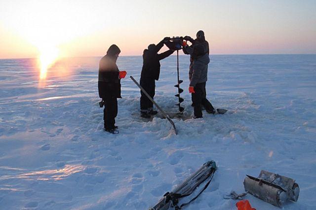 В Тазовском районе ученые возьмут образцы почв и лишайников.