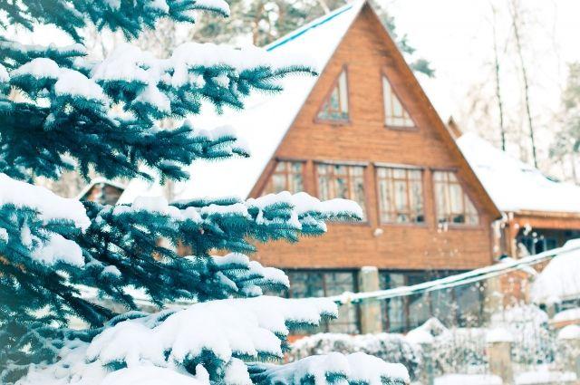 Дачные работы в марте: что сделать, чтобы спасти деревья и газоны ото льда?