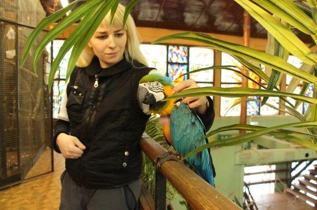 «Лабутены» Шнурова вылечили калининградского попугая отдепрессии