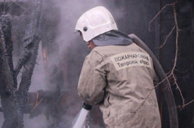 ВТверской области из-за пожара взоопарке погибли животные