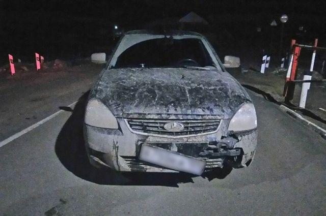 ВПетербурге девушка сбила двоих человек , «помяв» ими крышу машины— Чудовищное фото