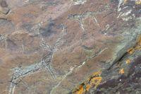 Трехметровые петроглифы обнаружены на Алтае
