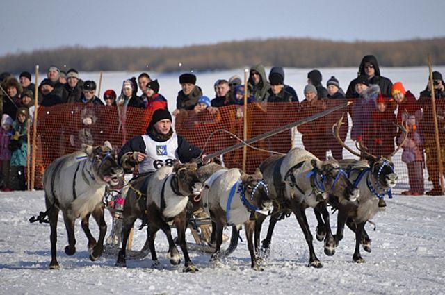 В Шурышкарском районе отметили День оленевода.