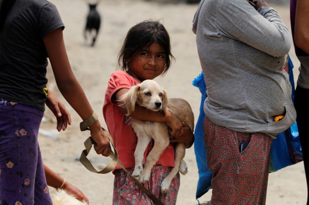 Владельцы домашних животных стоят в очереди, чтобы получить корм для своих питомцев.